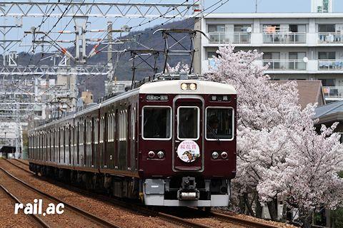桜満開の中を阪神競馬場桜花賞ヘッドマークを掲出して走る7003×6R